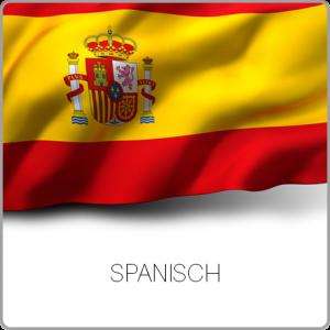 Wissenschaftliches Lektorat Dissertation, Lektorieren (Lektor) Doktorarbeit, Promotion - Spanisch, Español